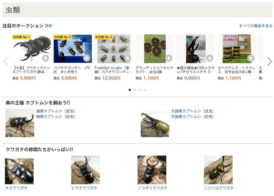 ヤフオクは昆虫の販売ができる