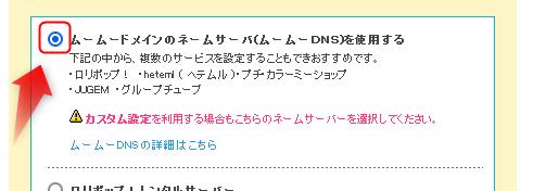 ネームサーバにムームーDNSを選択する